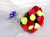 Bright Bunch Of Carnations