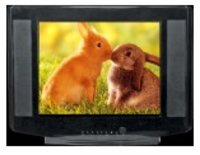Flat Screen Color Television