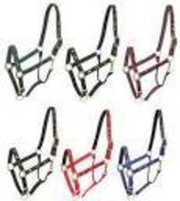 horse halters
