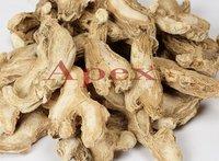 Zingiber Officnalis Root