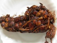 Organic Tamarind With Seed And Without Seed