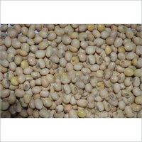 Hybrid Soya Bean Seeds
