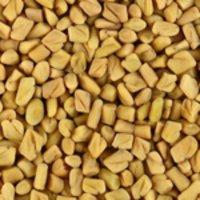 Fenu Greek Seeds