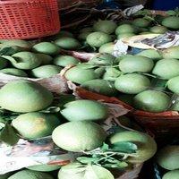 Fresh Mangosteen