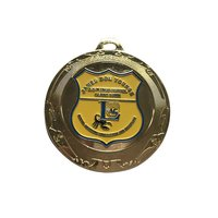 School Medallion