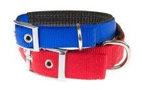 Dog Collar Leash Webbing Tape