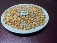 Cattle Feed Yellow Corn Maize