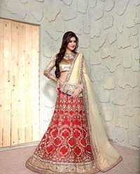 Ladies Stylish Chaniya Choli