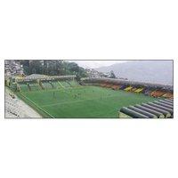 Football Pitch Artificial Grass