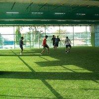 Futsal Pitch Artificial Grass