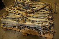 100% Quality Dried Stock Fish