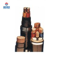 Power Cable With Plastic Insulation Copper- Tape Shielding