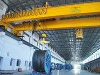Reliable EOT Cranes