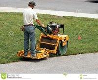 Grass Roller for Garden