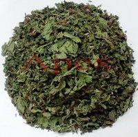 Mint Leaves (Pudina)