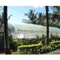 Horticultural Plantation