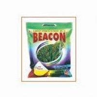 Beacon Gr