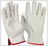 White Grain Leather Driver Gloves