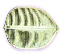 Silver Banana Leaf Shape Plates