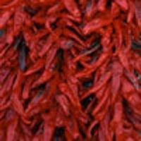 Dry Chillies