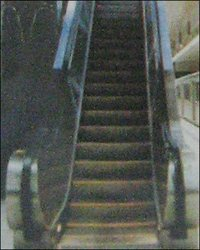 Public Transport Heavy Duty Escalator