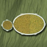Coriander Seed / Powder