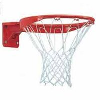 Ultra Flex Basketball Ring