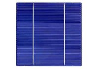 156 Poly Motech Solar Cells