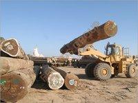 Timber Handling