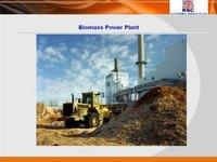 Biomass Power Plant Services