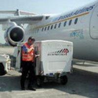 International Air Cargo Agent
