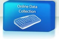 Online Data Collection Services