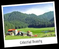 Himachal Pradesh -The Scenic Trail Domestic Tour Package Services