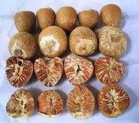 Indian Areca Nut