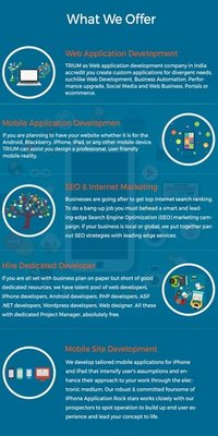 Software Application Development Service