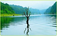 Cochin to Thekkady Tour Packages Services