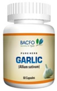 Allium Sativum Capsule