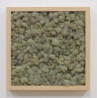 Scandia Moss Wall Frame Bl-75