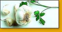 Allium Sativum Capsules