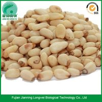 Dried Raw Hulled Pine Nuts
