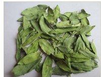 Dried Cassia Angustifolia Leaves
