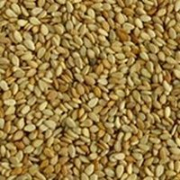 Pure Sesame Seeds