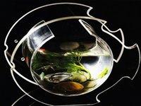Pisciform Aquarium