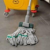 Unger Wet Mop