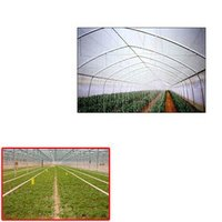 Uv Stabilized Films For Green House