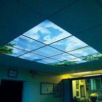 Virtual Sky (Polymer Plate)