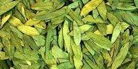 Senna Leaves (Dry/Powder) Cassia Angustifolia