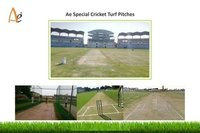 Cricket Turf Pitch Construction Service