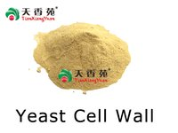 Yeast Cell Wall