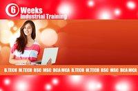 6 Weeks Industrial Training Service